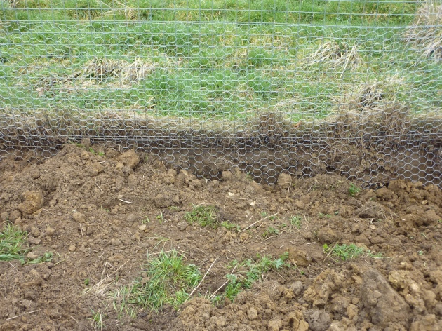 Permaculture Fence