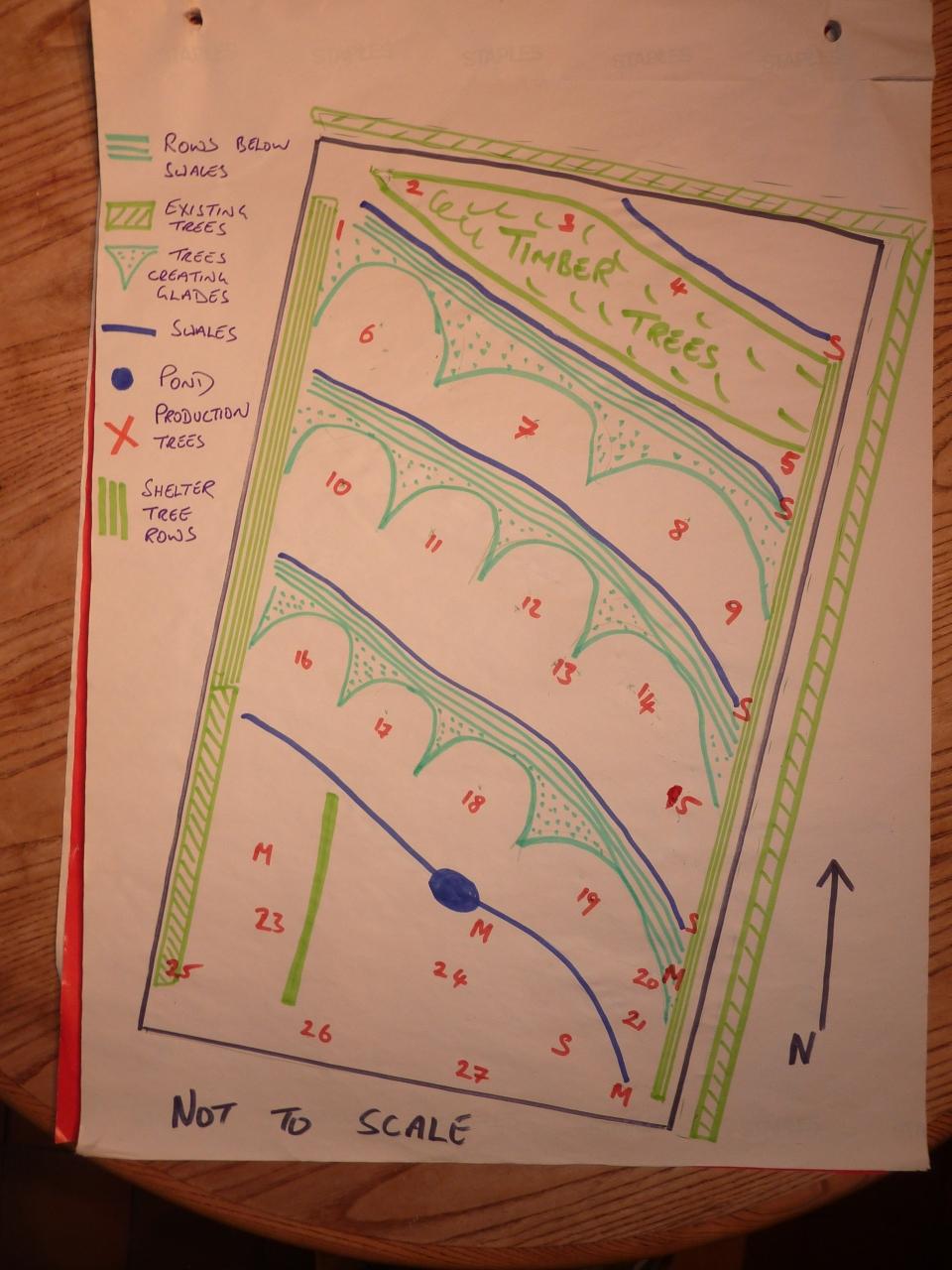 Forest Garden Design