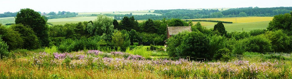 The Sustainable Smallholding